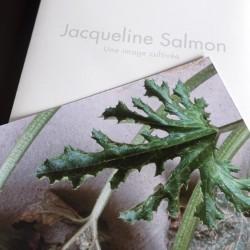 Jacqueline Salmon, une...